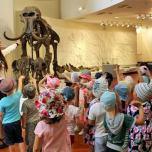 Няврємӑт музея юхӑтсӑт